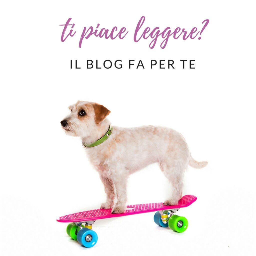 blog cani
