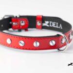 Collare di pelle rossa con strass per cani