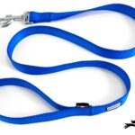 guinzaglio per cani in nylon blu elettrico