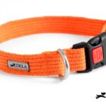 collare in cotone arancione per cani