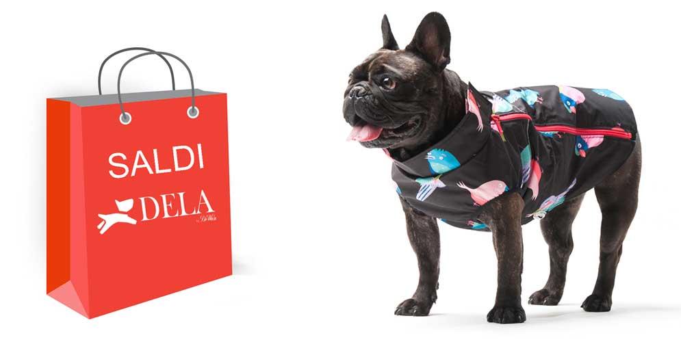 offerte accessori cani