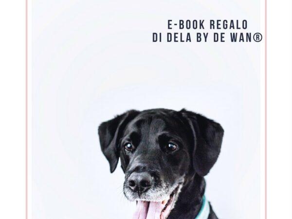 Divertirsi in casa con il cane - ebook