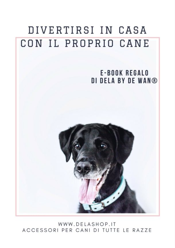 Divertirsi in casa con il cane - ebook