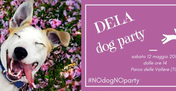 DELA dog party