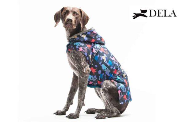 impermeabile cane con cappuccio