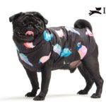piumino bulldog con zip