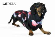 cappottino imbottito con zip per cane
