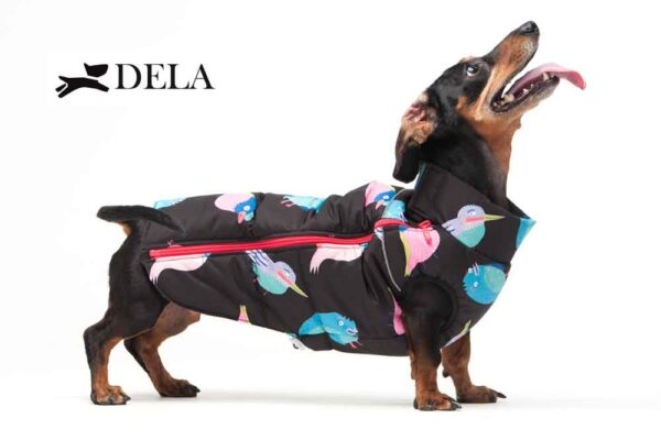 cappottini per cane