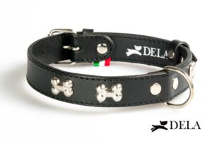 Black leather collar with studs for dogs