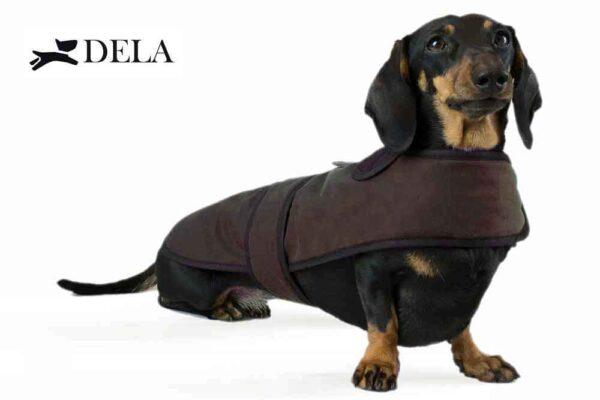 cappottino impermeabile per bassotto marrone