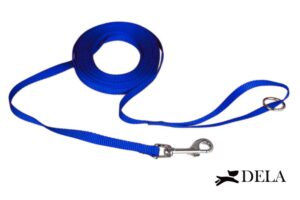 guinzaglio lungo blu