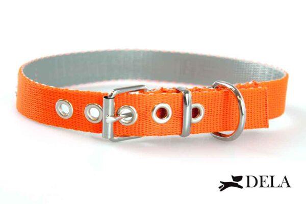 collare nylon cane arancione