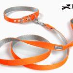 collare e guinzaglio nylon arancione