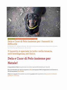 dogsportal-dela-cuordipelo1