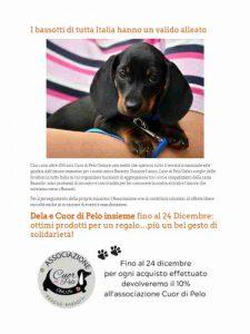 dogsportal-dela-cuordipelo3